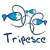 Camping Tripesce