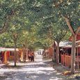 Camping in Fano, Marche