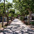 Camping per Famiglie a San Mauro, Forli Cesena