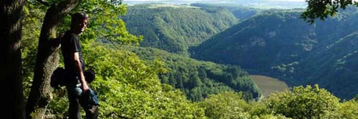 Schwarzwälder Hochwald