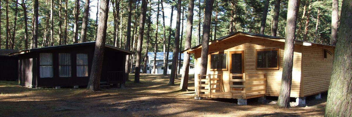 Orlinek Camping