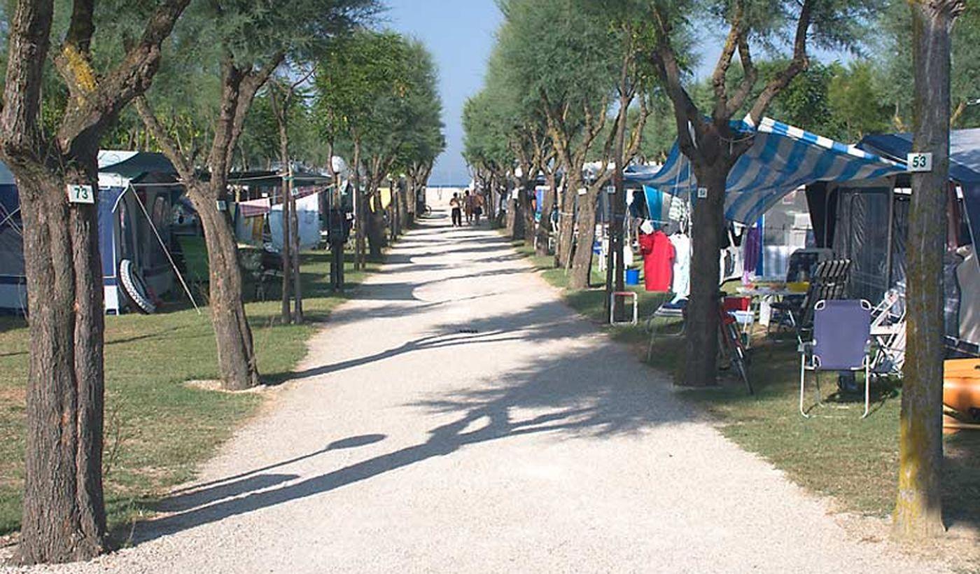 Camping Bellamare, Marche