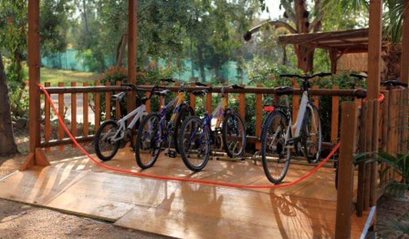 Biciclette in Campeggio