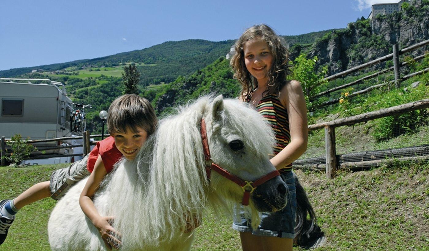 Zoo mit Pony