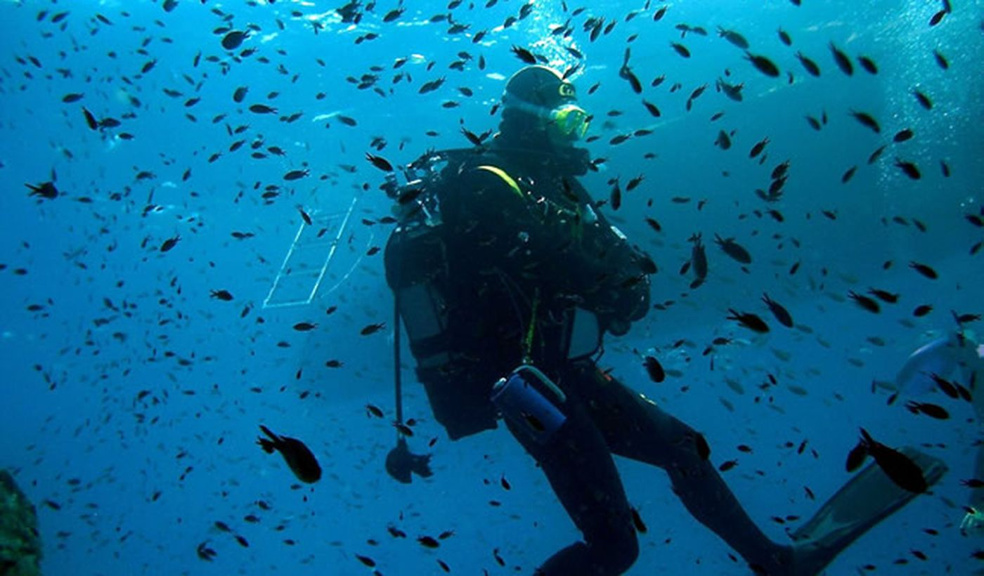 Diving in Toscana