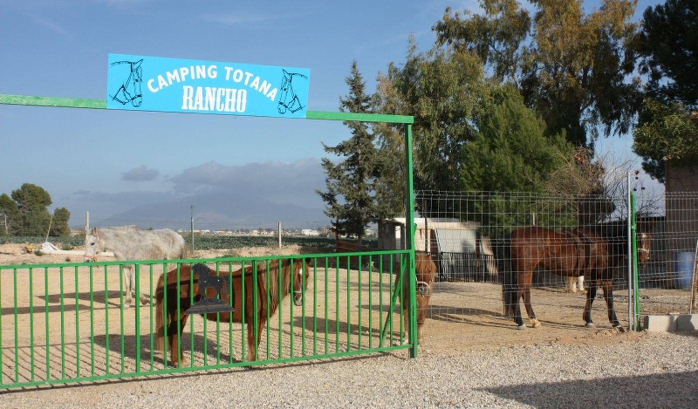 Camping Totana Park