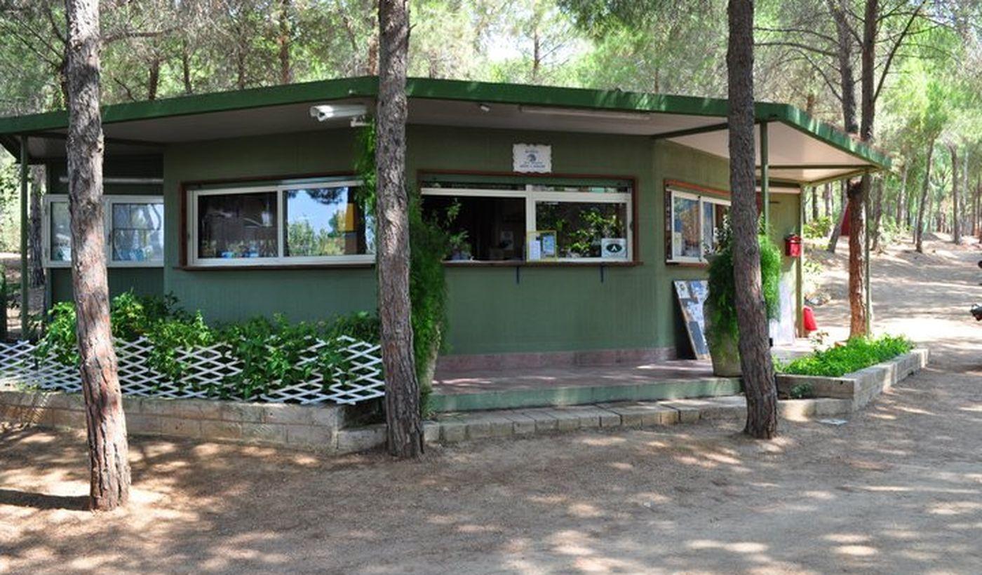 Camping Pini e Mare