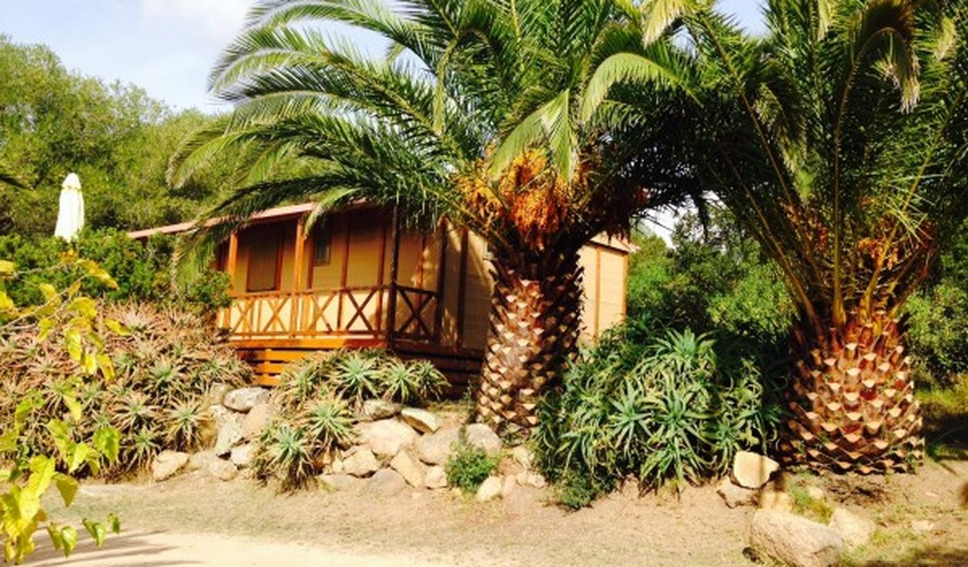 Camping Village à Olmeto, France