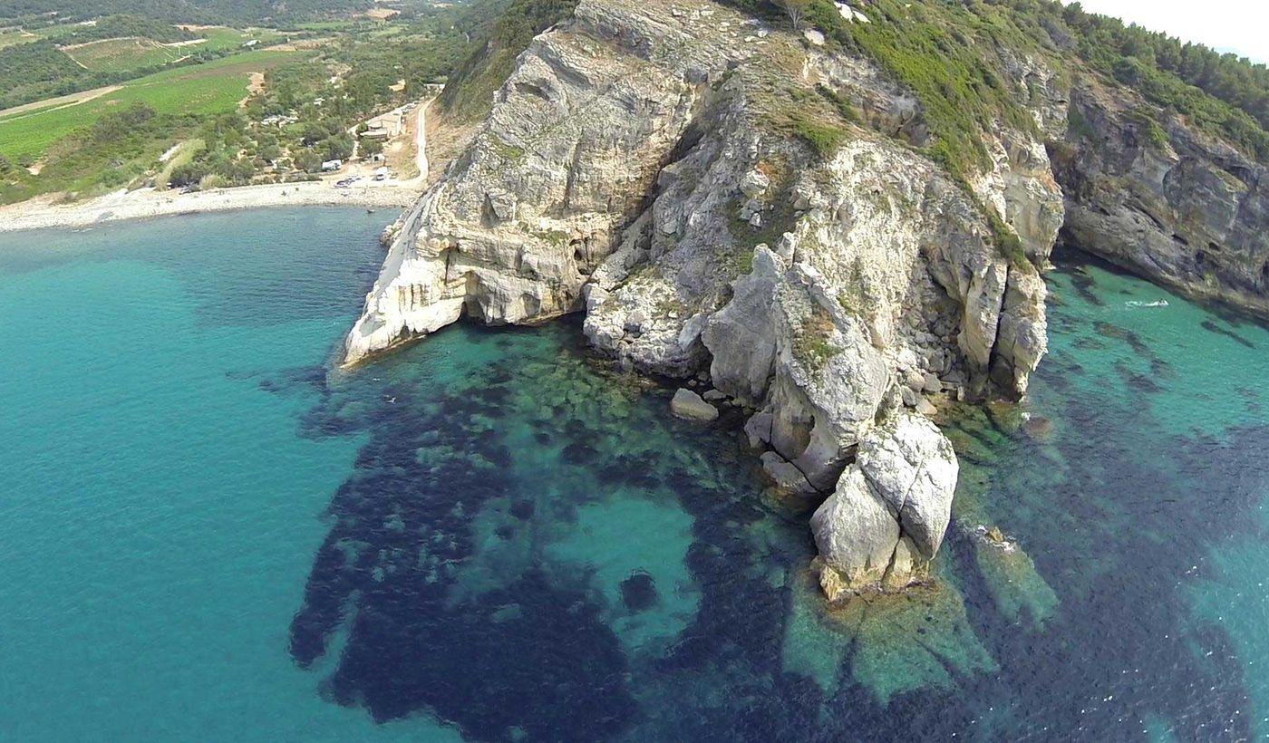 Patrimonio, Corse