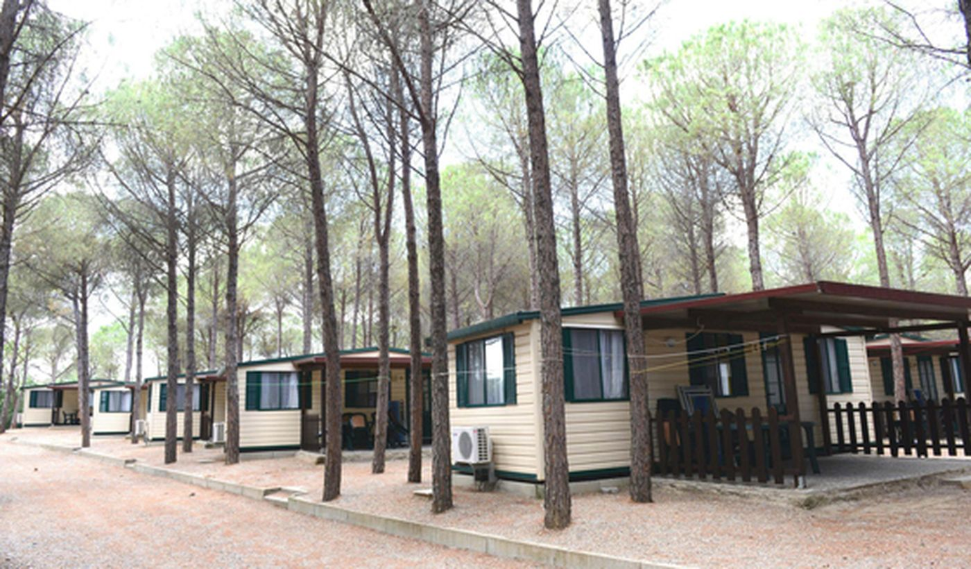 Camping mit Chalet