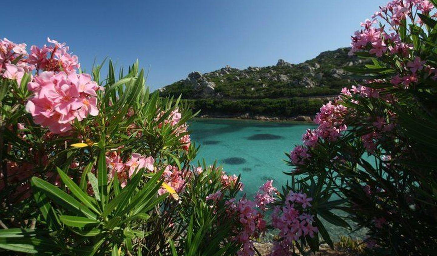 Camping pour la détente en Sardaigne