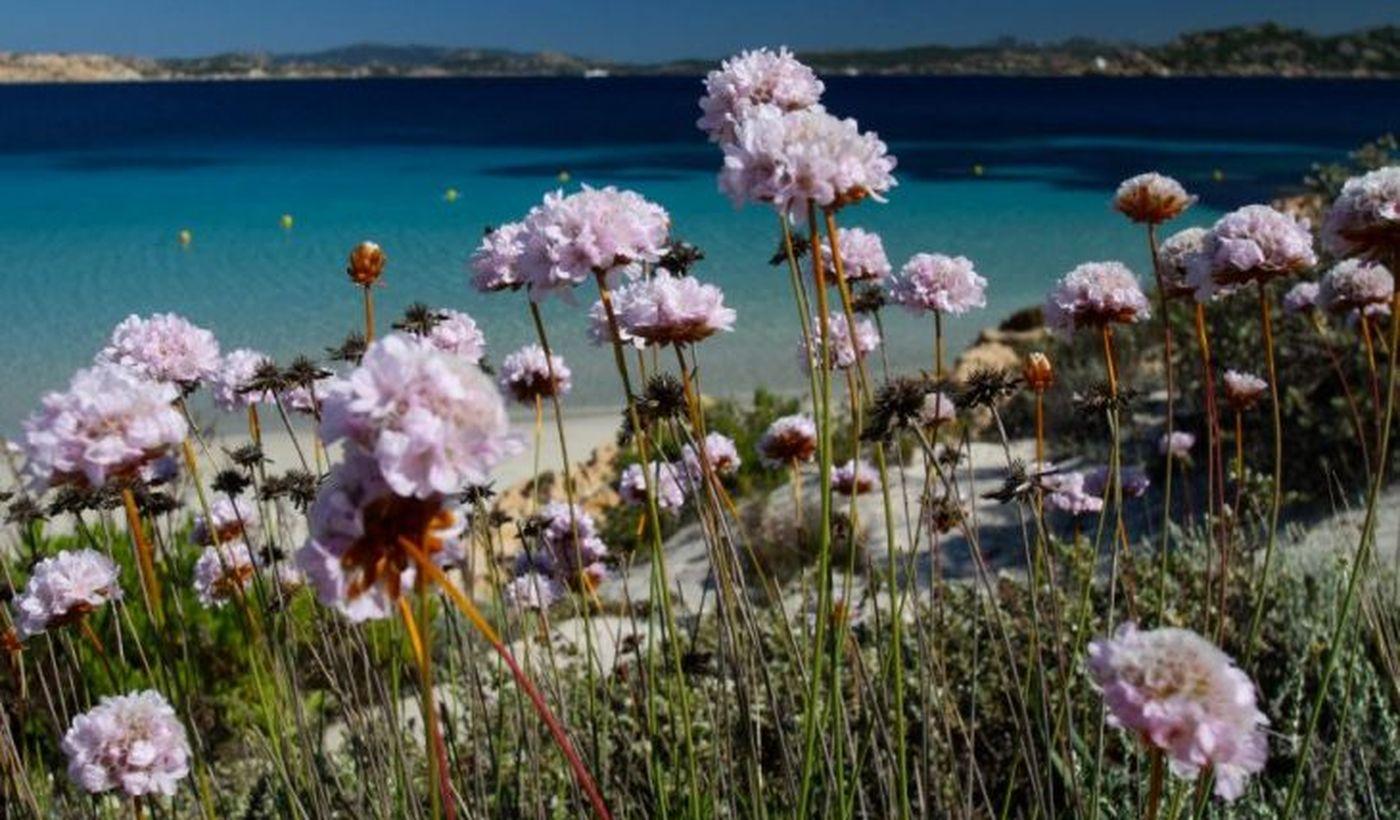 La Maddalena, Sardegna