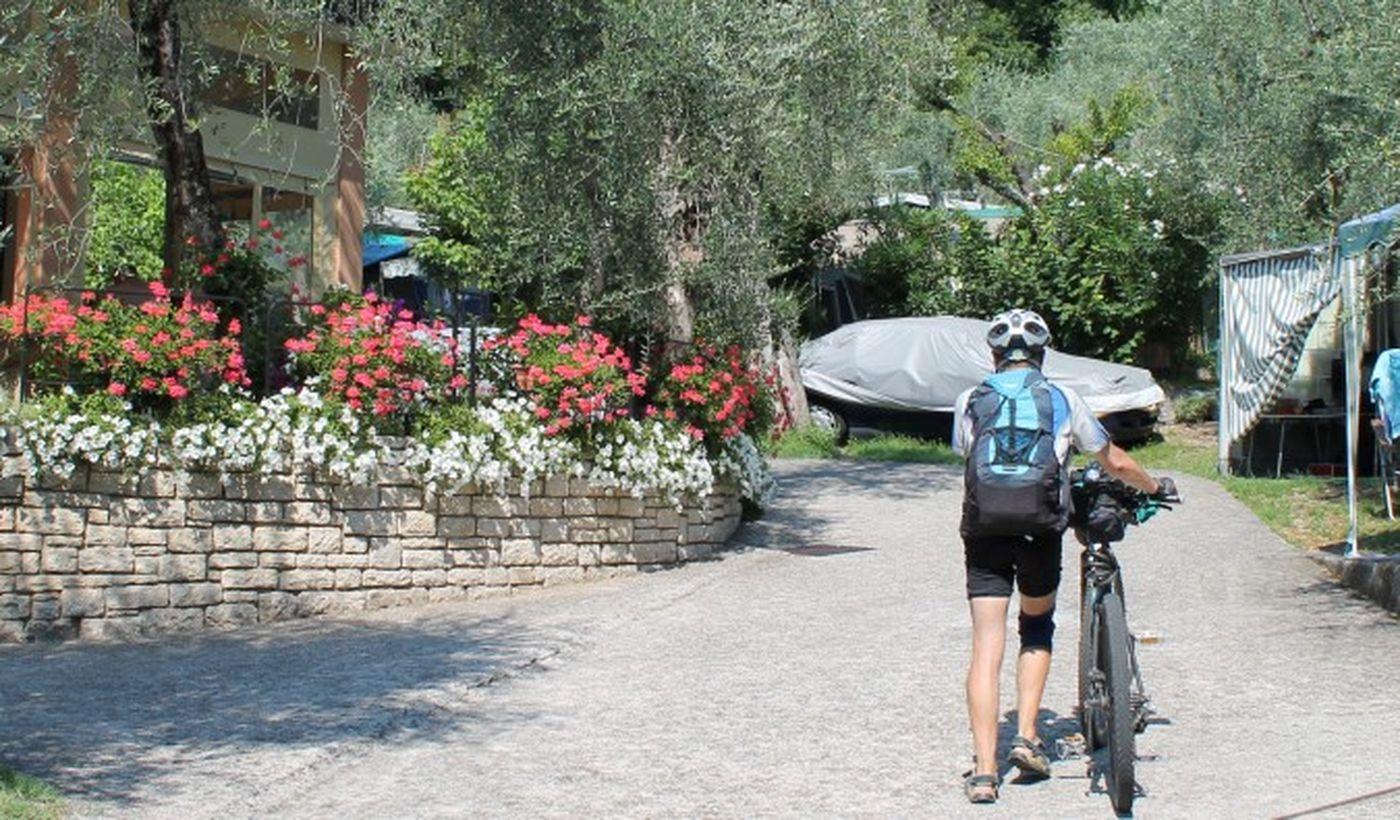 Camping Oliveti