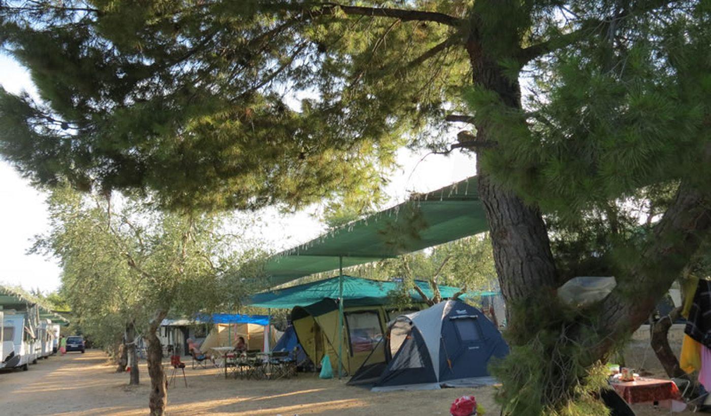 Camping sul Mare nel Gargano