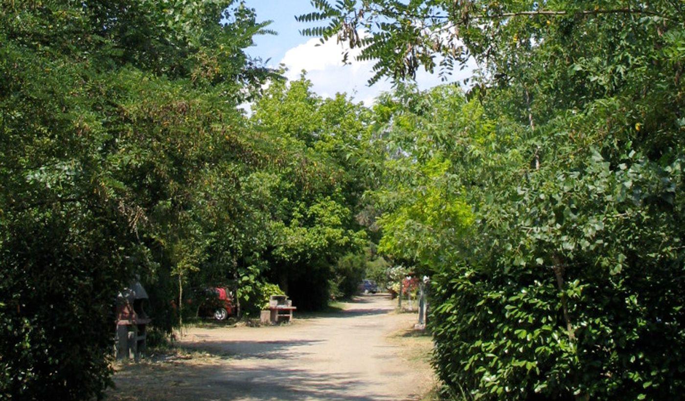 Camping près d'Ajaccio, Corse