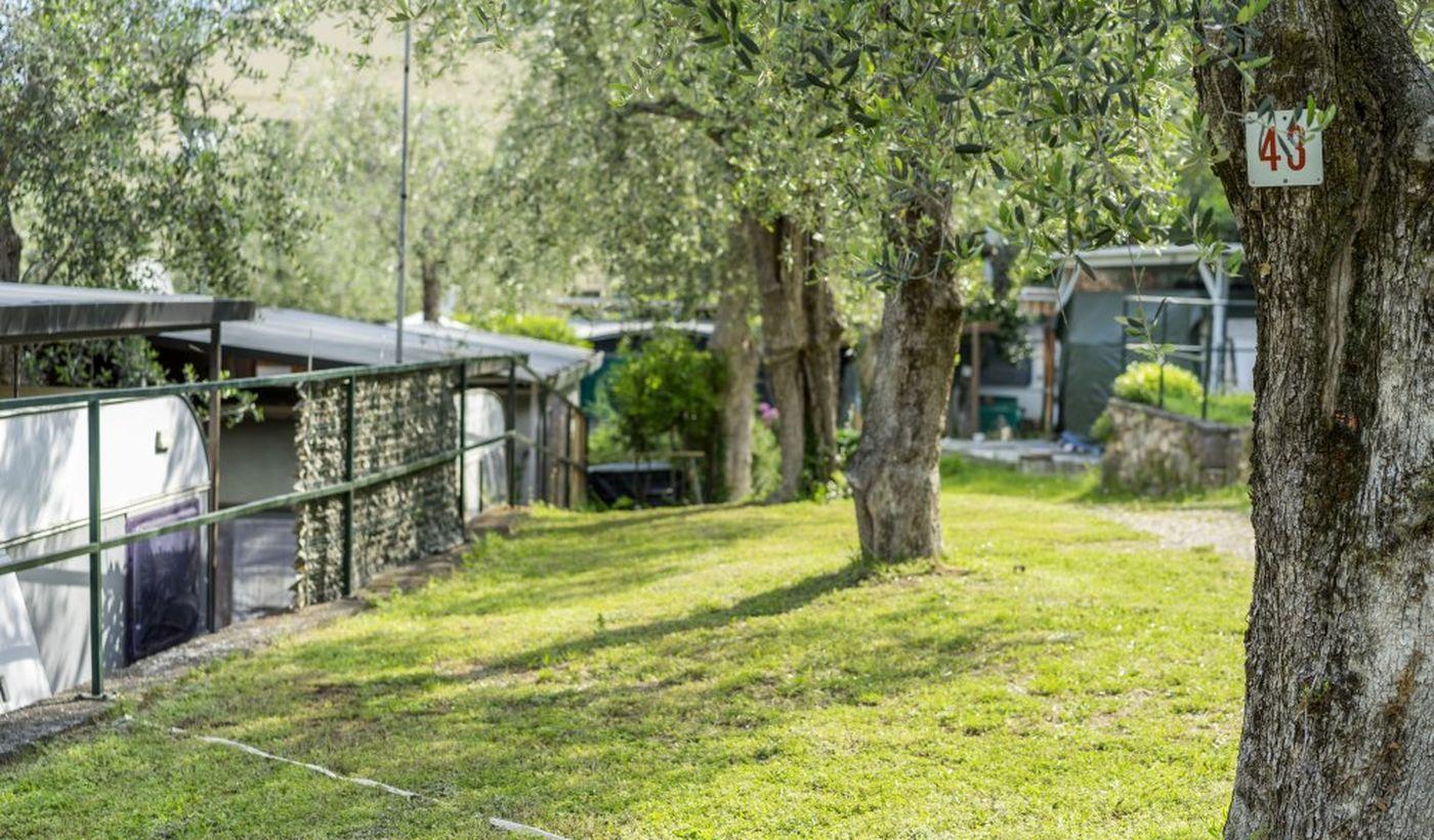 Camping Monja