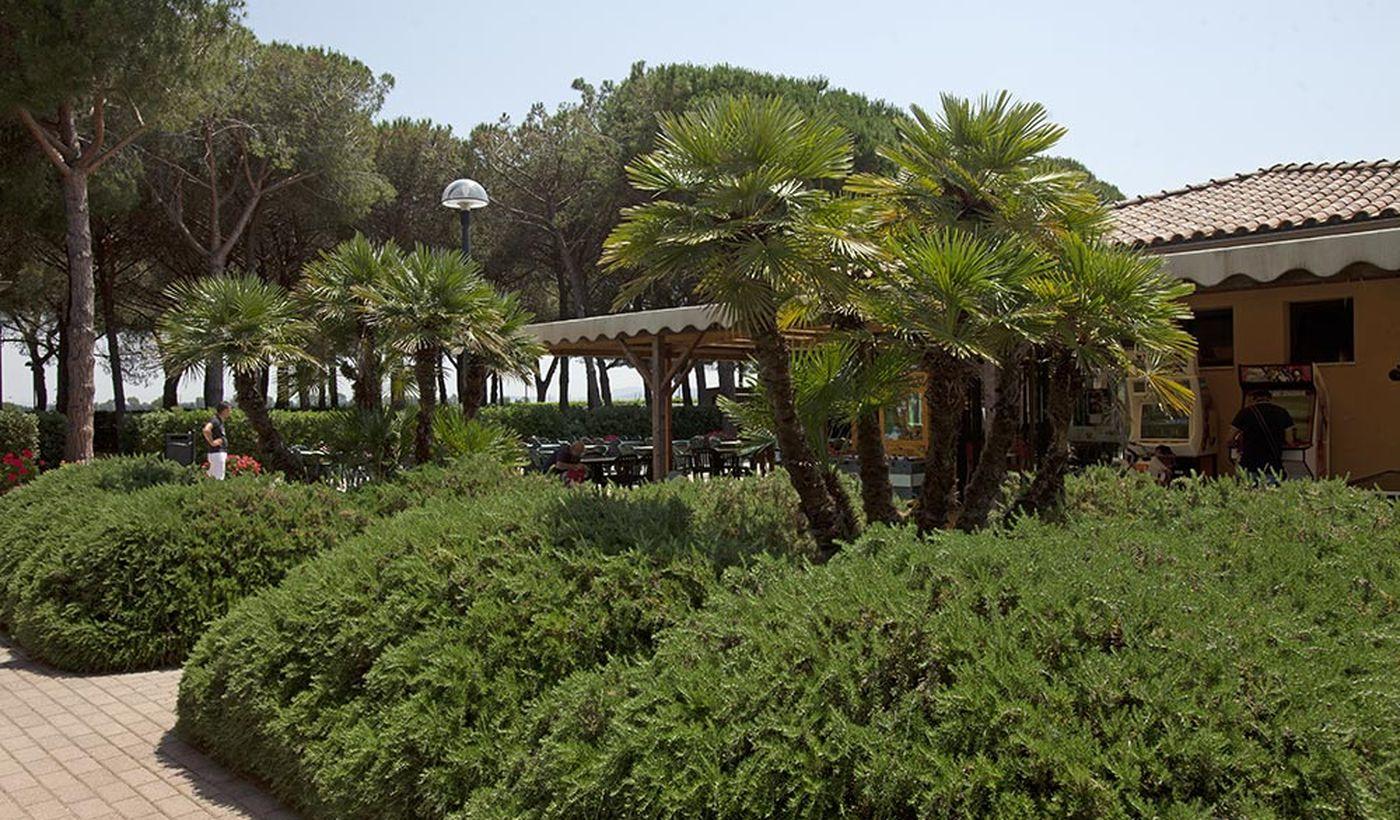 Camping Golfo degli Etruschi