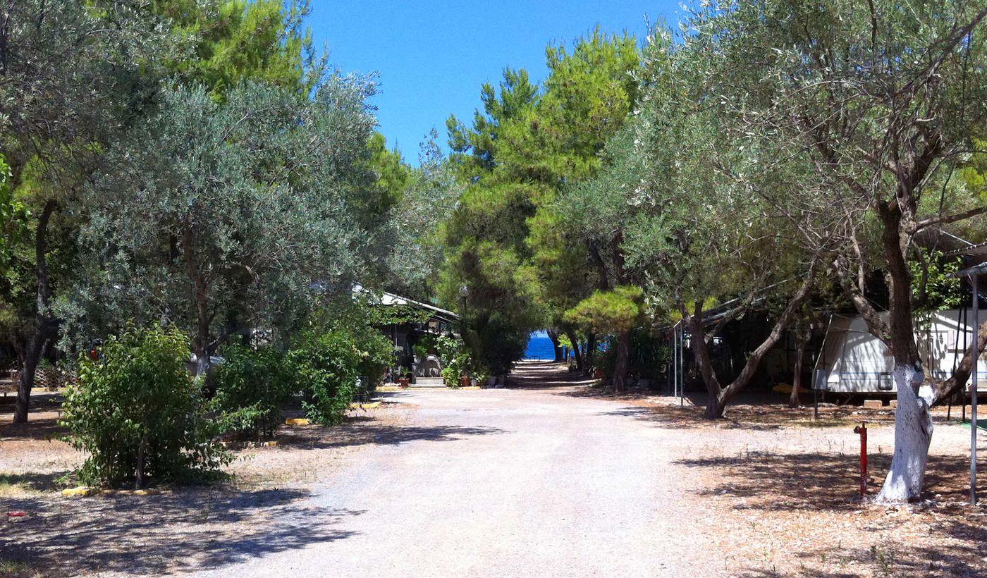 Zaritsi Camping