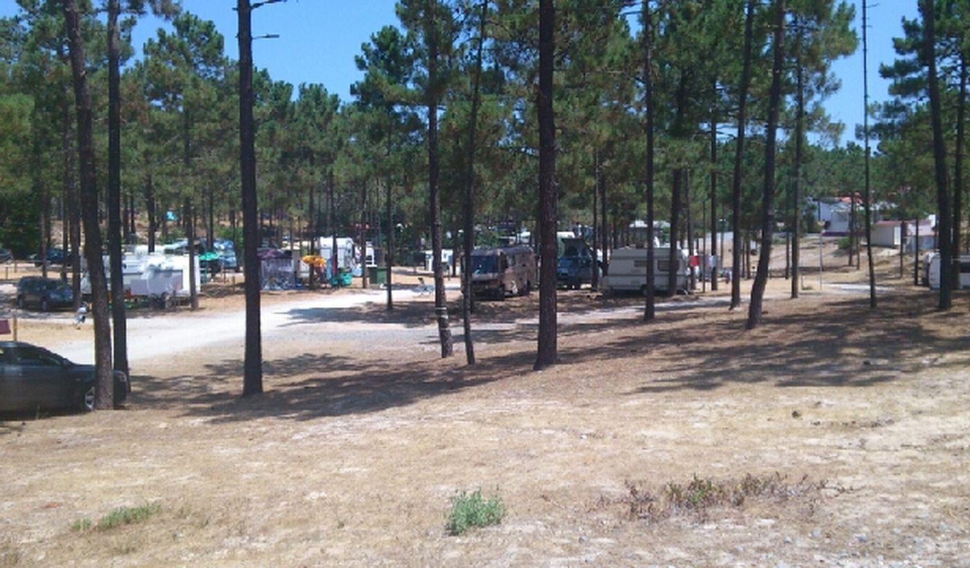 Camping Gale Beach