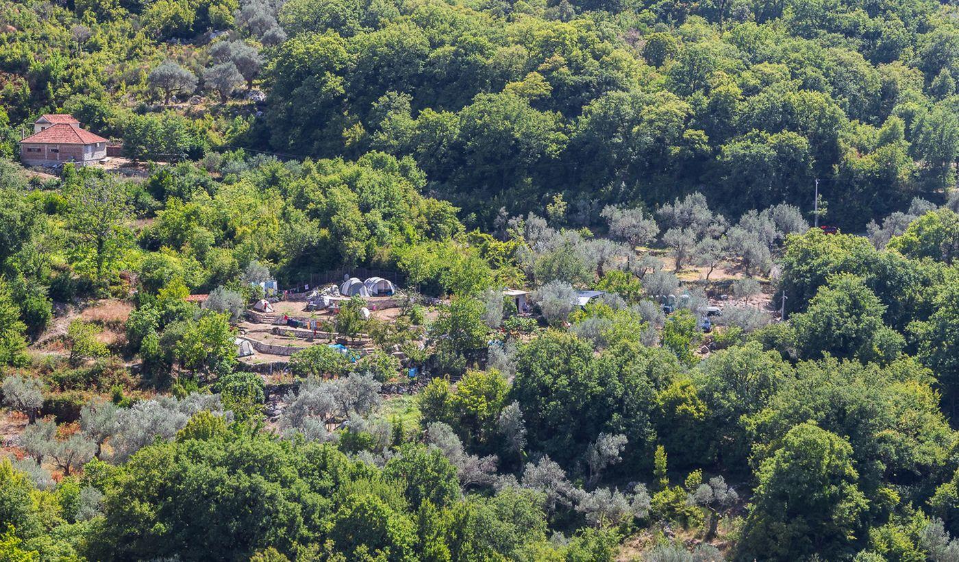 Bartula - My Olive Garden Camp