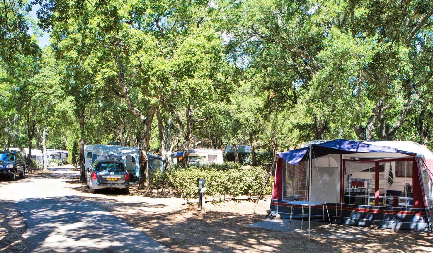 Camping Domaine de la Bergerie
