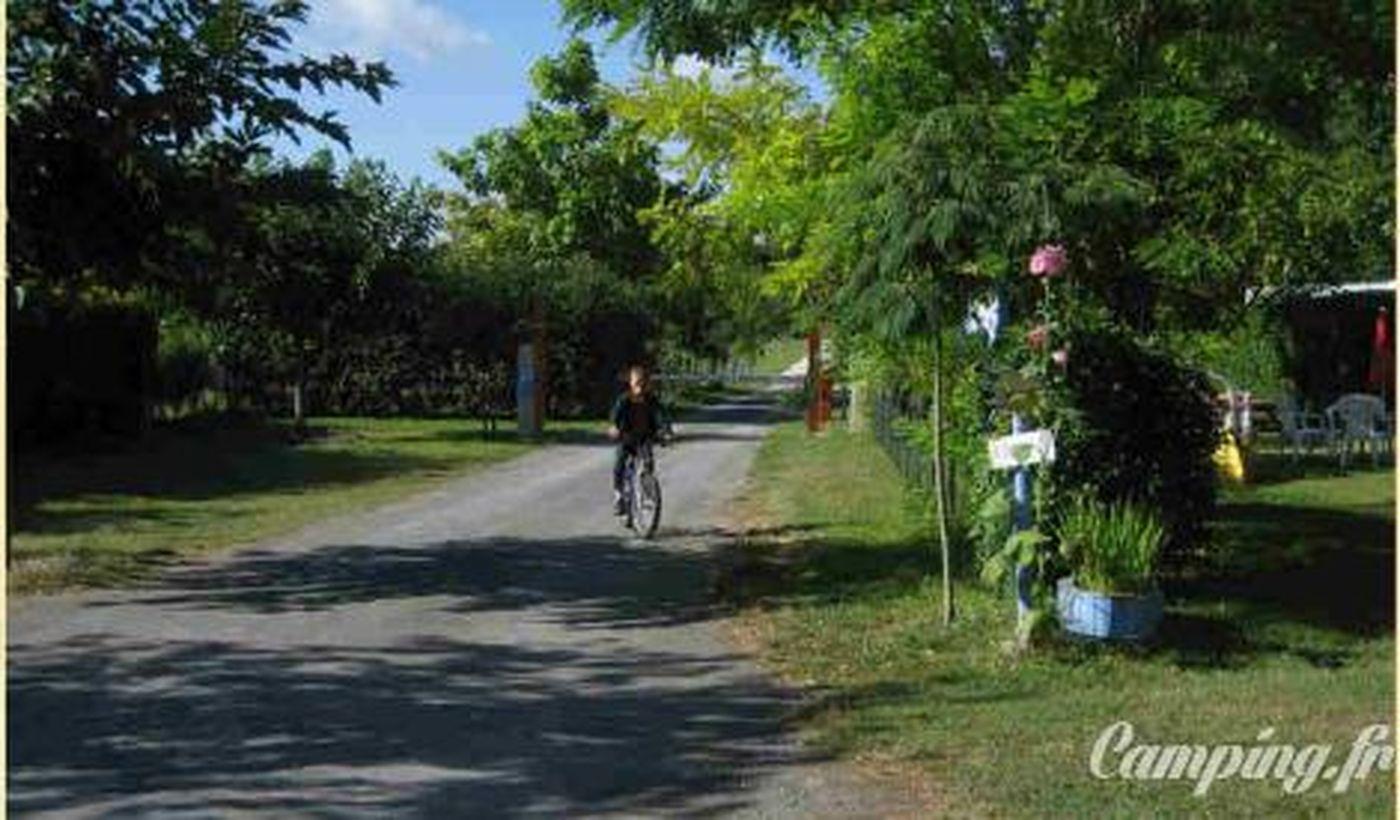 Camping Municipal du Mas