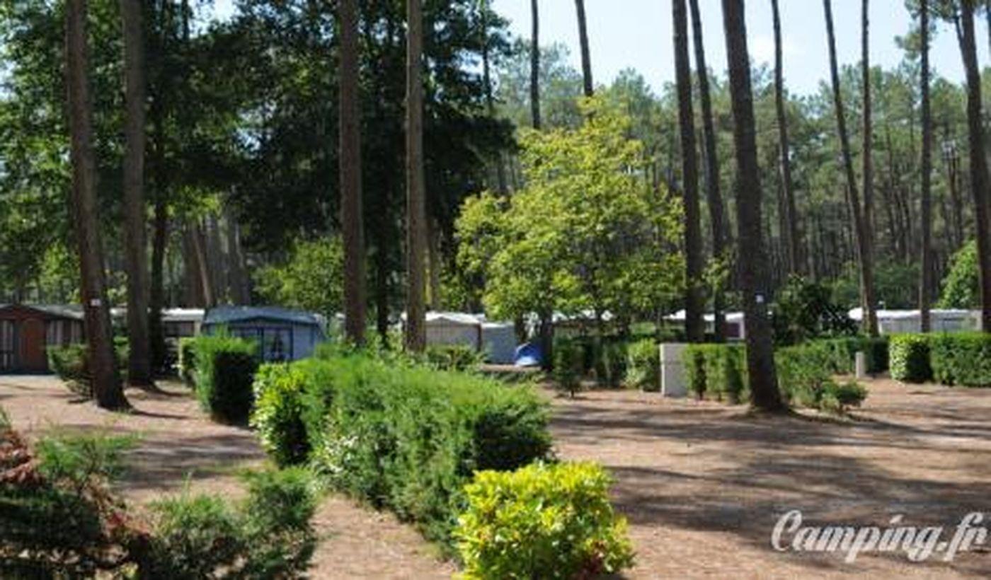 Camping Les Chênes