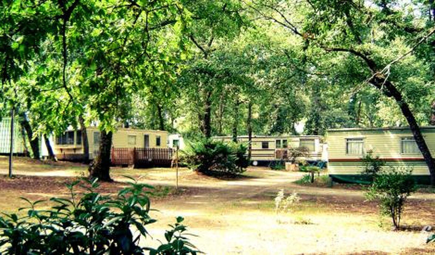 Camping Les Chants d'Oiseaux