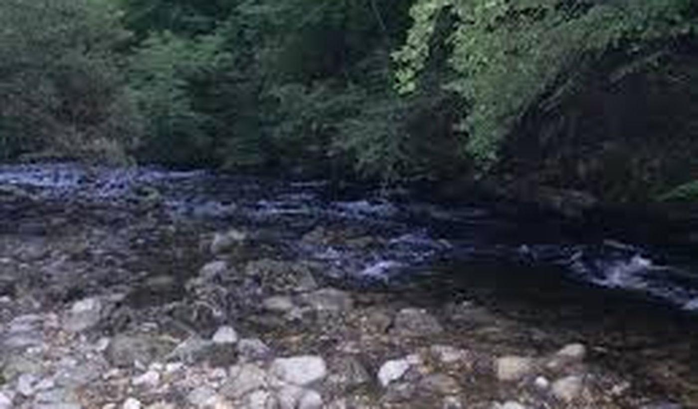 Le Moulin de Serre