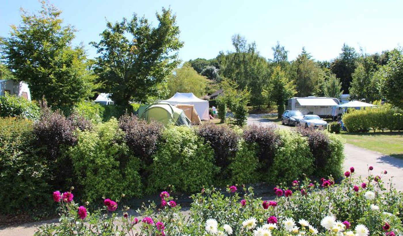 Emplacements du camping du Camping de l'Allée