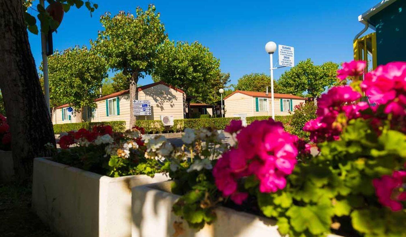 Villaggio Turistico Camping Summerland