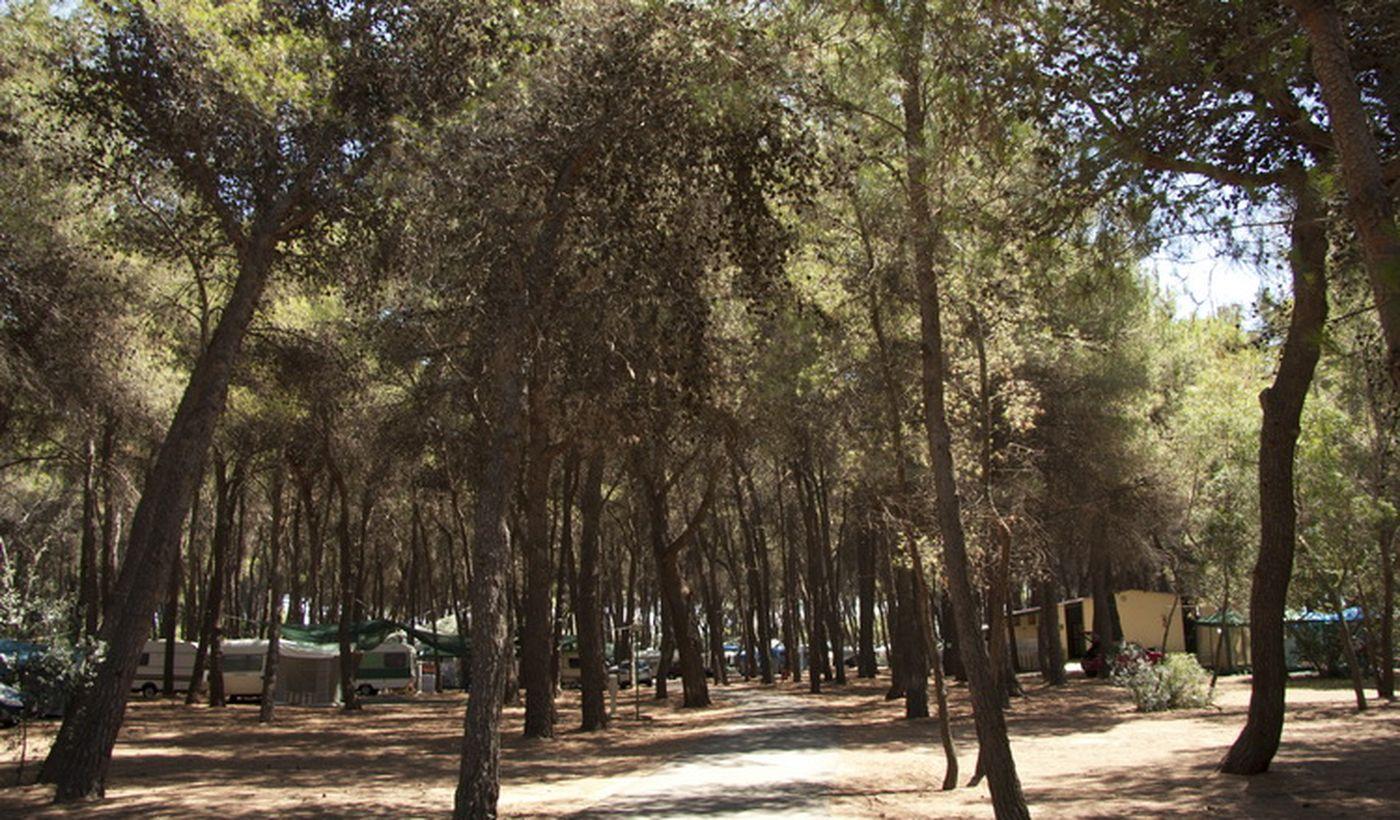Campeggio a Sibari