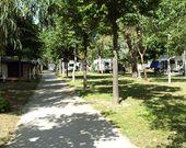 Pfad von Campingplatz