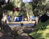 Campingplatz in Isola delle Femmine