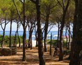 Camping am Meer in Sardinien