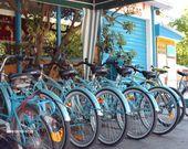 Ausflüge mit dem Fahrrad
