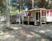 Camping Mare Pineta