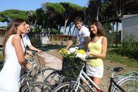 Bike Rental in the camping village