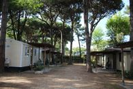 Camping on the Adriatic Coast