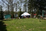 Pole namiotowe Stary Tartak