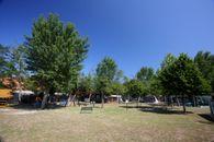 Camping Green