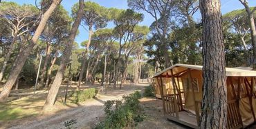 Camping Belmare