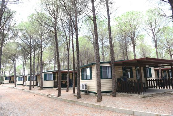 Camping mit Mobilheime in Kalabrien