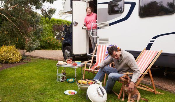 Campeggi e villaggi Pet Friendly accolgono gli animali domestici come ospiti umani.