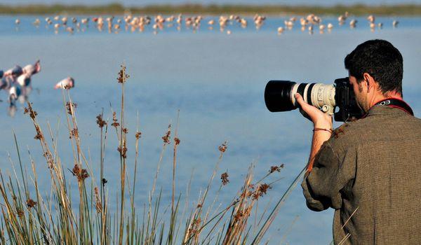 Fiera del Birdwatching a Comacchio.