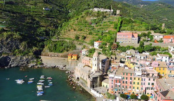 Vigne in Liguria