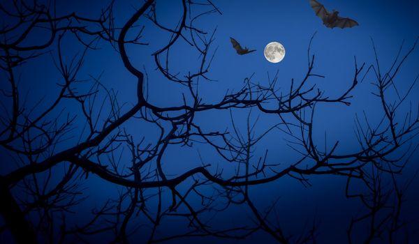 Luna piena di Halloween