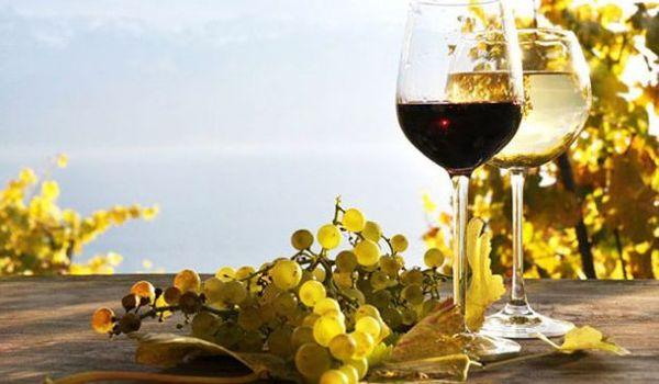Vini sardi