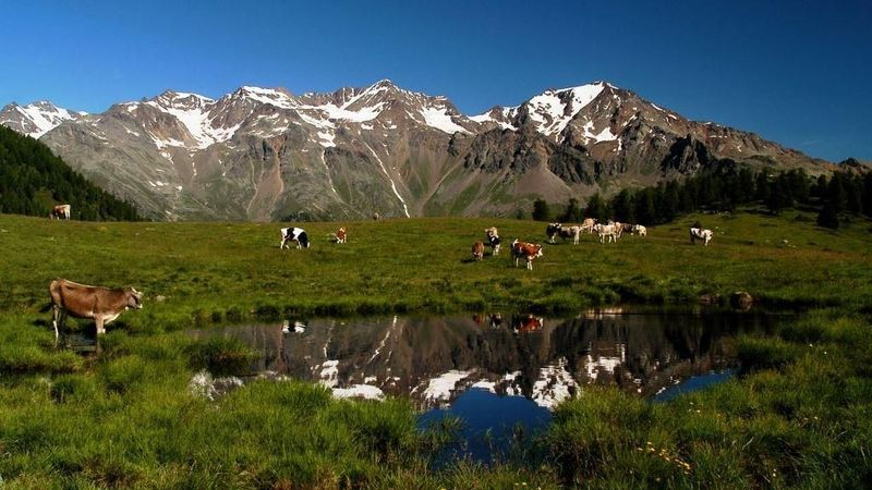 Trentino-Südtirol, nicht nur Winter und Schnee