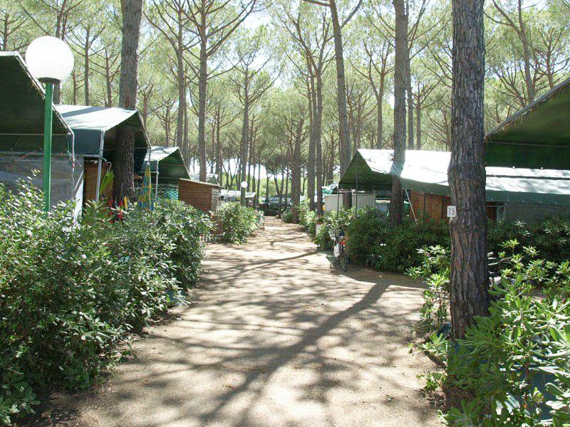 Camping in Marina di Bibbona, Toskana